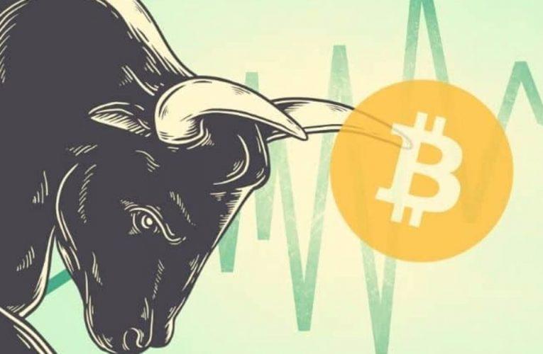 Kaip investuoti į kriptovaliutas bulių rinkos metu? II dalis